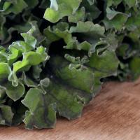 Kale Superfood
